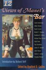 Twelve Views of Manet`s Bar