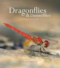 Dragonflies and Damselflies – A Natural History