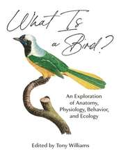 What Is a Bird? – An Exploration of Anatomy, Physiology, Behavior, and Ecology