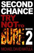 Second Chance:  Try Not to Burn, Book 2