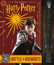 Battle of Hogwarts and the Magic Used to Defend It (Harry Potter)