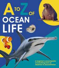 to Z of Ocean Life
