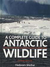 A Complete Guide to Antarctic Wildlife