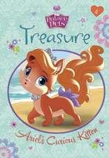 Treasure:  Palace Pets)