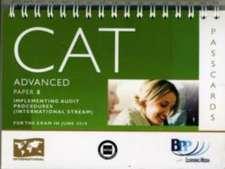 CAT - 8 Implementing Audit Procedures (INT)