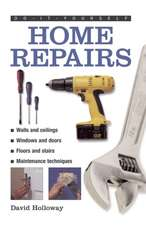 Home Repairs:  To Beat Ailments, Combat Allergies and Boost Energy