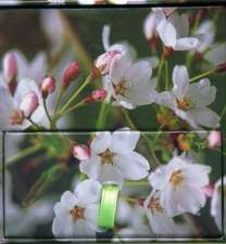 Memo Block (Cherry Blossom)