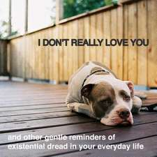 I Don't Really Love You