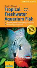 Tropical Freshwater Aquarium Fish:  From A to Z