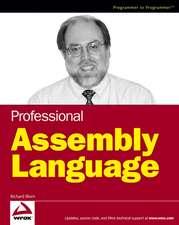 Professional Assembly Language