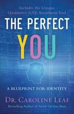 The Perfect You: A Blueprint for Identity