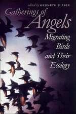 Gatherings of Angels