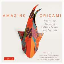 Amazing Origami Kit: Traditional Japanese Folding Papers and Projects [144 Origami Papers with Book, 17 Projects]