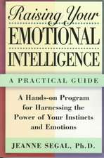 Raising Your Emotional Intelligence:  A Practical Guide