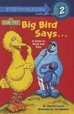 Big Bird Says...a Game