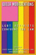 Queer Mobilizations:  LGBT Activists Confront the Law