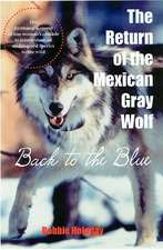 The Return of the Mexican Gray Wolf: Back to the Blue