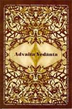 Advaita Vedanta a Philosophical Reconstruction