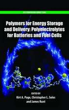 Polymers for Energy Storage and Delivery: Polyelectrolytes for Batteries and Fuel Cells