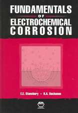Stansbury, E:  Fundamentals of Electrochemical Corrosion