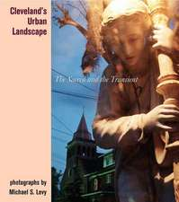 Cleveland's Urban Landscape:  The Sacred and the Transient