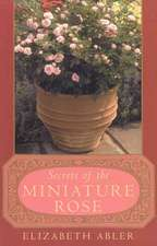 The Secrets of the Miniature Rose