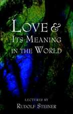 Love and Its Meaning in the World