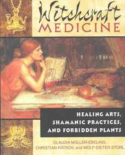 The Witchcraft Medicine:  How to Be Healthy and Productive Using Music and Sound