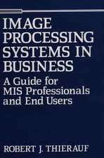 Image Processing Systems in Business:  A Guide for MIS Professionals and End Users