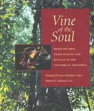 Vine of the Soul:  Medicine Men, Their Plants & Rituals