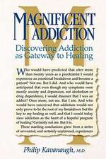 Magnificent Addiction:  Discovering Addiction as Gateway to Healing