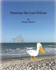 Penelope the Lost Pelican