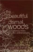 The Beautiful Dismal Woods:  Short Stories from the Adirondacks
