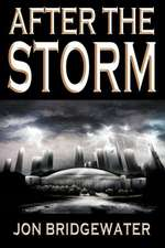After the Storm:  A David Storm Mystery