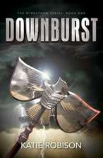 Downburst:  The Ultimate Guide for Business Planning to Profitability