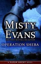 Operation Sheba