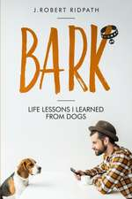 Bark Life lessons I learned from dogs