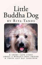 Little Buddha Dog
