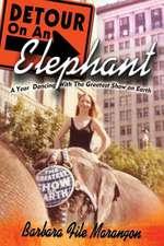 Detour on an Elephant