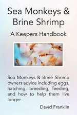 Sea Monkeys & Brine Shrimp