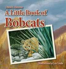A Little Book of Bobcats