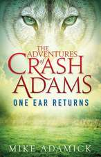 The Adventures of Crash Adams