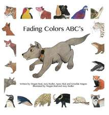 Fading Colors ABC's