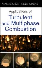 Applications of Turbulent and Multiphase Combustion:  Team Assessment