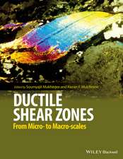 Ductile Shear Zones: From Micro– to Macro–scales