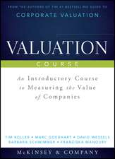Valuation Course: An Introductory Course to Measuring the Value of Companies
