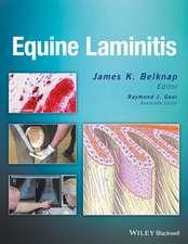 Equine Laminitis