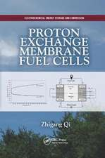 Proton Exchange Membrane Fuel Cells