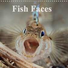 Fish Faces 2017