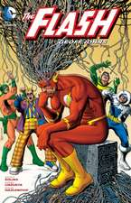 The Flash, Book 2